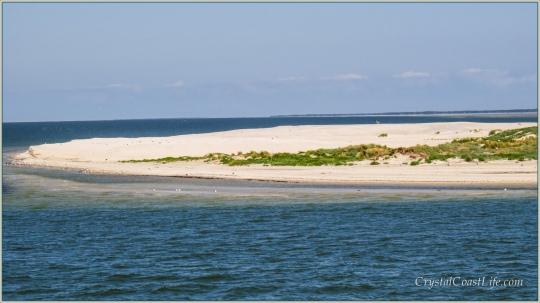 Beach Near Ferry Terminal, Hatteras Island, NC