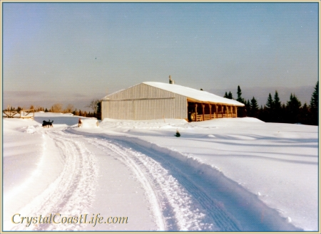 The barn not far from our calving barn