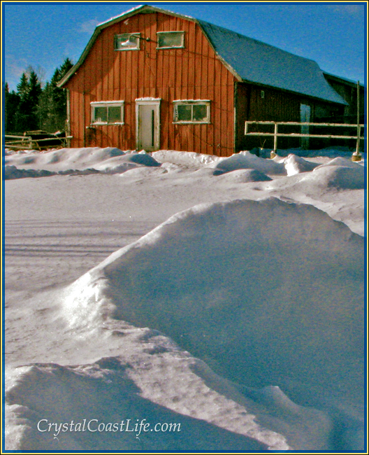 Snowy Tay Creek Barn
